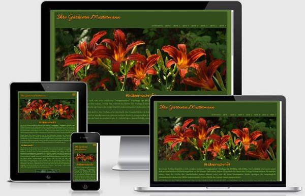 Responsive Template Nr. 70