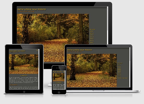 Responsive Template Nr. 95